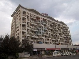 4 Bedrooms Apartment for sale in n.a. ( 1612), Maharashtra Sinhagad Road