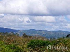 N/A Terreno (Parcela) en venta en , Guanacaste LAKE FOREST 4: Countryside Home Construction Site For Sale in Tilarán, Tilarán, Guanacaste