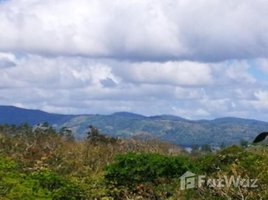 Guanacaste LAKE FOREST 4: Countryside Home Construction Site For Sale in Tilarán, Tilarán, Guanacaste N/A 土地 售
