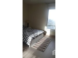 Al Jizah Nile view Modern stylish apartment fully equipped 2 卧室 住宅 租