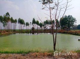 N/A Land for sale in Doem Bang, Suphan Buri 19 Rai Land in Doem Bang Nang Buat, Suphan Buri