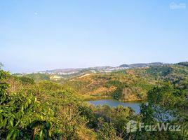 林同省 Tram Hanh Đất XD nghỉ dưỡng view hồ và rừng thông, đường nhựa gần đồi chè Cầu Đất N/A 土地 售