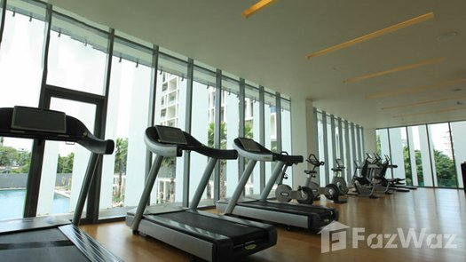 Photos 1 of the Communal Gym at The Sukhothai Residences