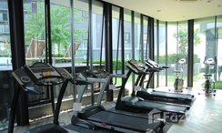 Photos 1 of the Communal Gym at The Seed Mingle