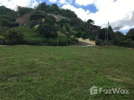 N/A Terreno (Parcela) en venta en , Guanacaste Altos del Flamingo Lot 19: A great property in a great location!, Playa Flamingo, Guanacaste