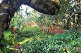 bedroom Land for sale at in Bocas Del Toro, Panama
