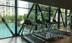 Communal Gym at D Condo Ping
