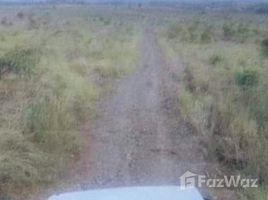 民马罗巴区 Bansud 335.7 Hectares of Agricultural Property for Sale in Bansud N/A 房产 售