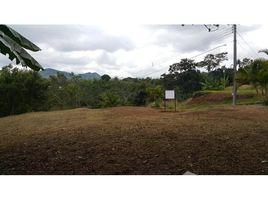 N/A Terreno (Parcela) en venta en , Alajuela Palmitos, Naranjo, Alajuela