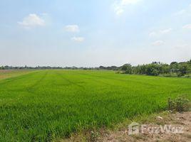 N/A Land for sale in Sai Kong Din, Bangkok Large Plot for Sale in Khlong Sam Wa