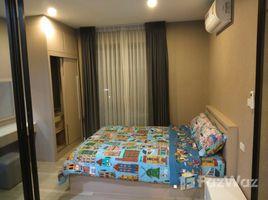 1 Bedroom Condo for rent in Bo Win, Pattaya The Living Plus Condo