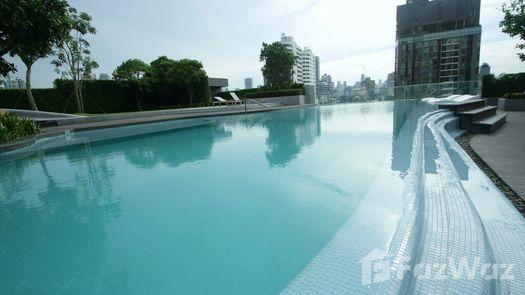 3D Walkthrough of the Communal Pool at Ceil By Sansiri