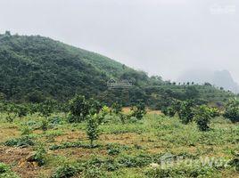 N/A Land for sale in Lam Son, Hoa Binh Bán cây xăng tại Lương Sơn Hòa Bình diện tích 10.000m2
