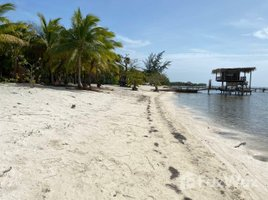N/A Land for sale in , Bay Islands Nice Beachfront Land Plot for Sale in Molton Bight