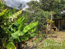 2 Habitaciones Casa en alquiler en Yangana (Arsenio Castillo), Loja For rent Amazing Property in Yangana, Yangana, Loja
