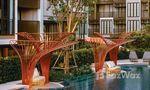Communal Pool at Kawa Haus