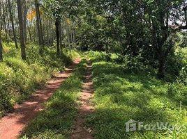 攀牙 Lo Yung Land For Sale At Takua Thung N/A 土地 售