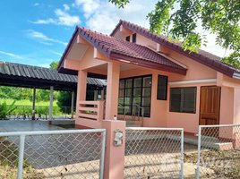 3 Bedrooms House for sale in San Sai, Chiang Rai Single House in San Sai, Mueang Chiang Rai