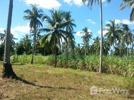 卡拉巴松 Magallanes Farm Lot For Sale N/A 土地 售