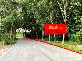 罗勇府 Nong Taphan 9-1-87 Rai Land for Sale in Ban Khai, Rayong N/A 土地 售