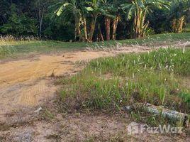 N/A Land for sale in Thep Krasattri, Phuket Land 248 SQM in Ban Khuan, Phuket for Sale
