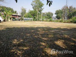 N/A Land for sale in Tha Wang Tan, Chiang Mai 800 SQM Land for Sale in Saraphi, Chiang Mai