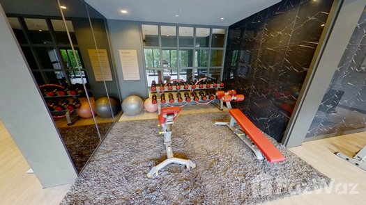 3D Walkthrough of the Communal Gym at A Space I.D. Asoke-Ratchada
