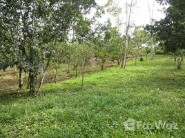 Cartago 2 Bedroom House in Turrialba with the Huge Land for Sale 2 卧室 屋 售
