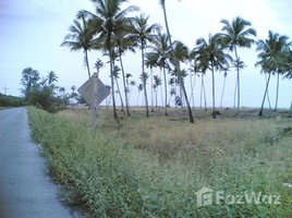 N/A Property for sale in Laem Pho, Pattani 24 Rai Land for sale in Talo Kapo Beach