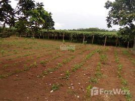 林同省 Tan Thanh Bán đất trang trại sổ cây lâu năm giá rẻ chính chủ tại xã Tân Thanh, Lâm Hà, Lâm Đồng N/A 土地 售