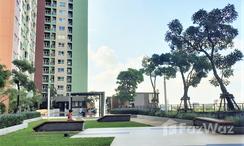 Photos 2 of the Communal Garden Area at Lumpini Place Srinakarin