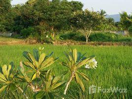 清迈 Ban Pao Beautiful Land with Creek 4 Rai N/A 土地 售