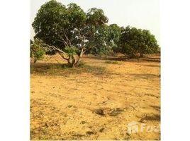 Gujarat n.a. ( 913) Aanaippakkam Village, Arakkonam, Tamil Nadu N/A 土地 售