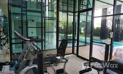 Photos 2 of the Communal Gym at Palm Springs Nimman Phoenix