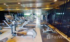 Photos 3 of the Communal Gym at Quattro By Sansiri