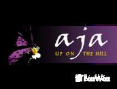 Developer of Aja Villas
