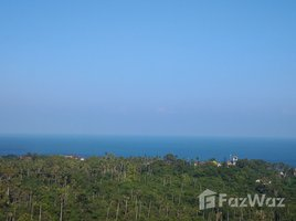 N/A ที่ดิน ขาย ใน บ่อผุด, เกาะสมุย Land for Sale in Chaweng Noi