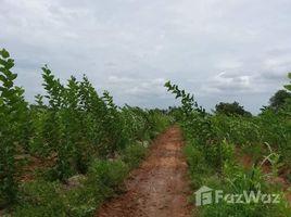 N/A Land for sale in Nong Tum, Chaiyaphum 107 Rai Land close to the Main Road Phu Khiao - Kaset Sombun