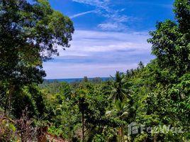 苏梅岛 Ko Pha-Ngan Beautiful Coastline Sea and Mountain View Land for Sale in Ko Pha-Ngan N/A 土地 售