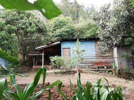 Земельный участок, N/A на продажу в , San Jose Mountain Home Construction Site For Sale in Tarbaca, Tarbaca, San José