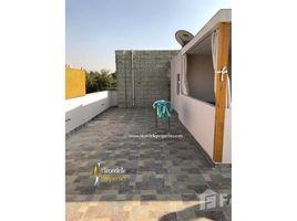 Cairo Penthouse studio with shared pool 4rent in maadi 1 卧室 顶层公寓 租