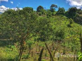 Земельный участок, N/A на продажу в , Cartago 1 Hectare Land for Sale in Cartago