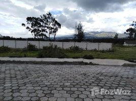 Pichincha Cayambe Home Construction Site For Sale in Cayambe, Cayambe, Pichincha N/A 土地 售