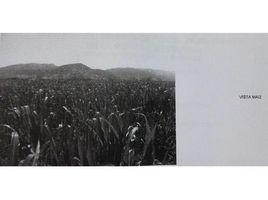 N/A Terreno (Parcela) en venta en Santa Cruz, Libertador General Bernardo O'Higgins Santa Cruz, Libertador General Bernardo O'higgins, Address available on request