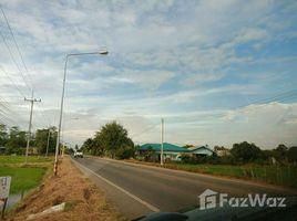 北柳 Don Chimphli 9-2-0 Rai Land in Klong 17 Don Chimphli for Sale N/A 土地 售