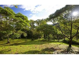N/A Land for sale in , Heredia Rancho San Fernando: 27 Hectares of Pristine Rain Forest Property With Rivers & Waterfalls PRICE RED, Cinchona, Alajuela