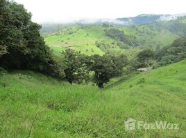 Alajuela Zarcero, Alajuela, Address available on request N/A 土地 售