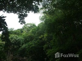 N/A Land for sale in , Guanacaste Sámara, Guanacaste, Address available on request