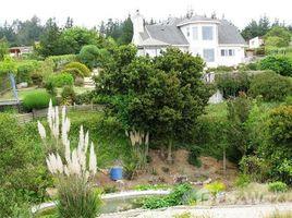 4 Habitaciones Casa en alquiler en Casa Blanca, Valparaíso Algarrobo
