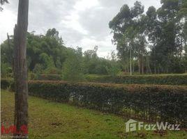 N/A Terreno (Parcela) en venta en , Antioquia # LA CEJA ANTIOQUIA, La Ceja, Antioqu�a